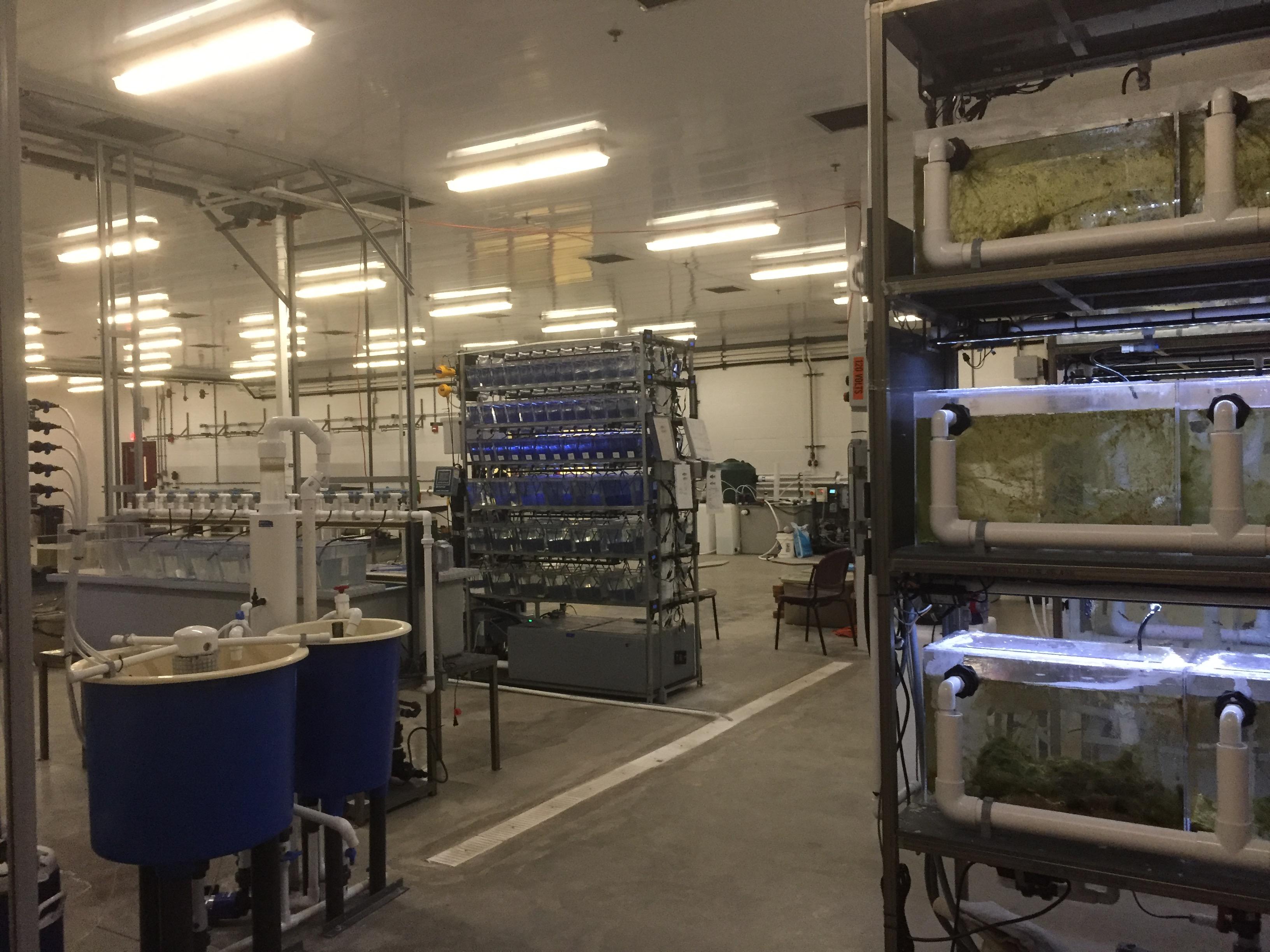 Aquaculture room